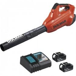 Souffleur à batterie haut débit (2 batteries +1 chargeur)